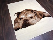 Modern 7x5ft 150x210cm Woven Backed Bulldog Dogs Rugs Top Quality Creams/Beiges